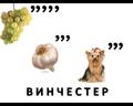 hello_html_m49fb96fd.png