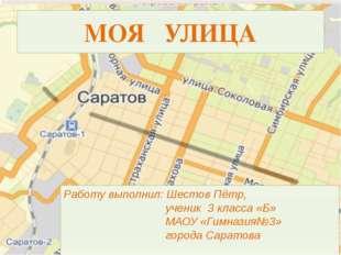 Работу выполнил: Шестов Пётр, ученик 3 класса «Б» МАОУ «Гимназия№3» города Са