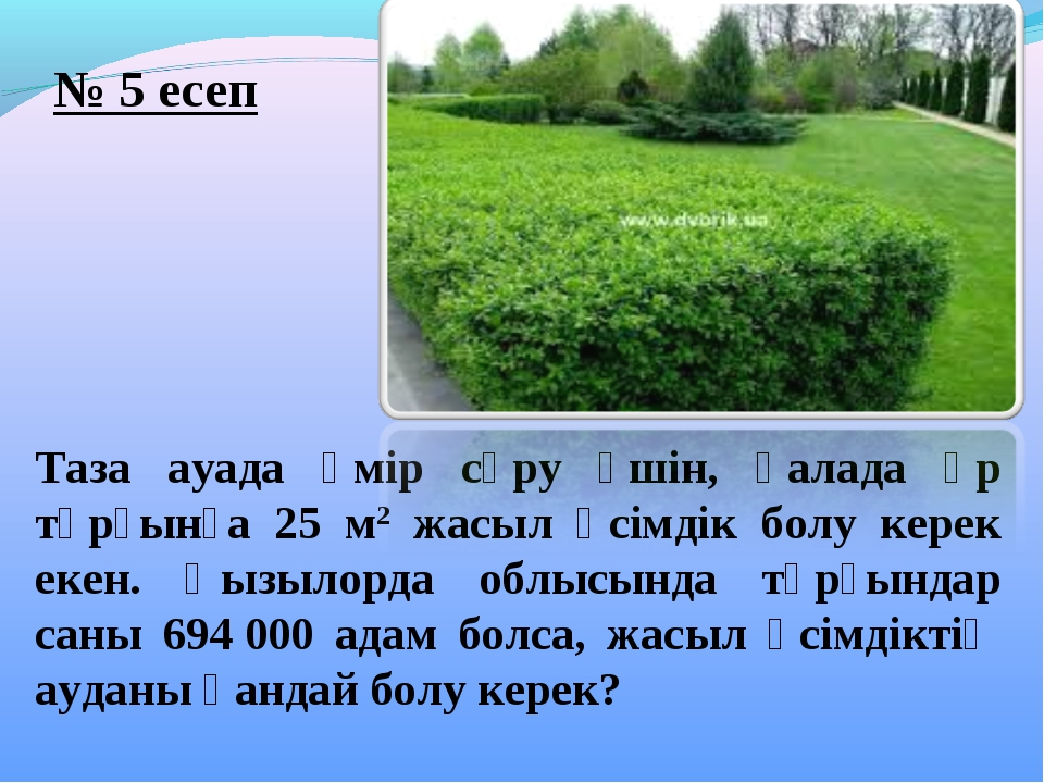 Таза ауада өмір сүру үшін, қалада әр тұрғынға 25 м2 жасыл өсімдік болу керек...