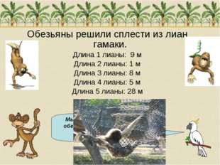 Обезьяны решили сплести из лиан гамаки. Длина 1 лианы: 9 м Длина 2 лианы: 1 м