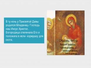 В ту ночь у Пресвятой Девы родился Младенец- Господь наш Иисус Христос. Богор