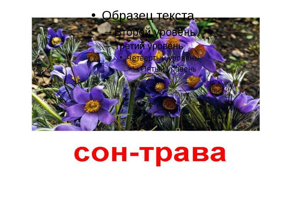 Оод подготовила ученица 3 класса Орлова Ирина