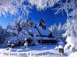 The trees, roofs & ground are covered with snow.