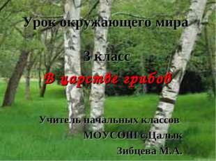 В царстве грибов Учитель начальных классов МОУСОШ с.Цалык Зибцева М.А. Урок