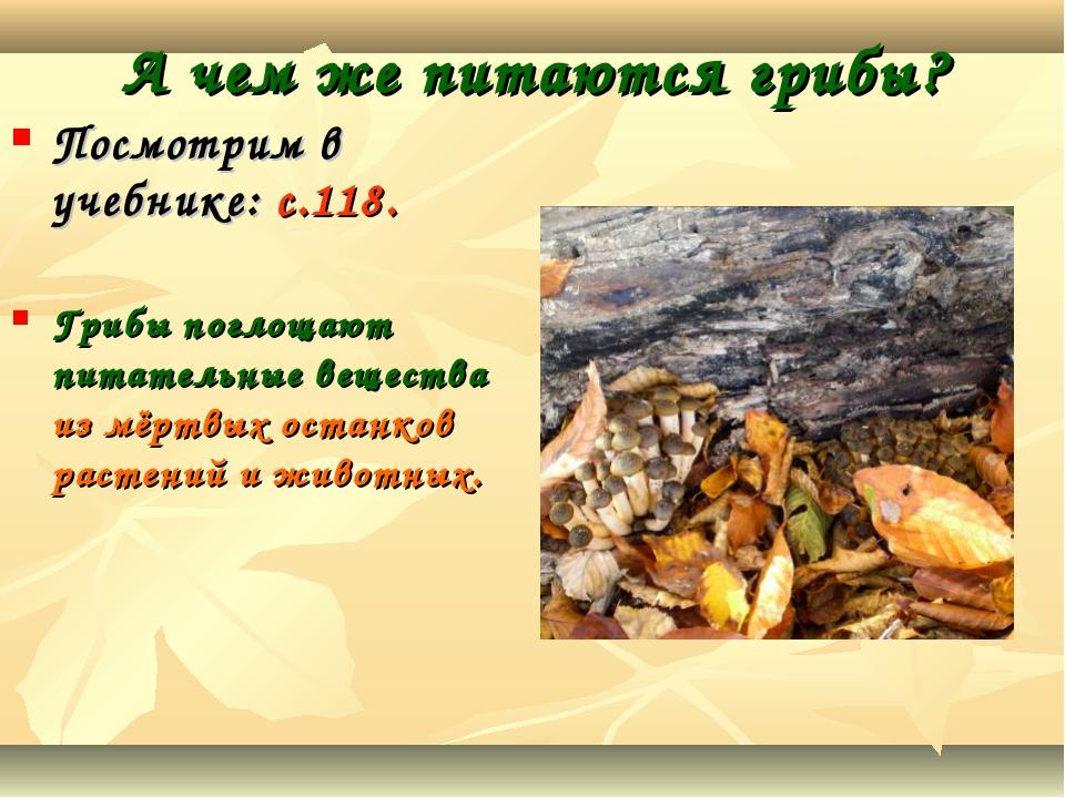 А чем же питаются грибы? Посмотрим в учебнике: с.118. Грибы поглощают питател...