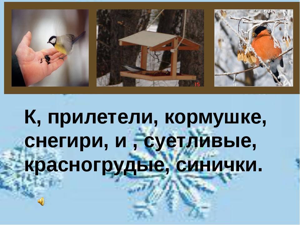 К, прилетели, кормушке, снегири, и , суетливые, красногрудые, синички.
