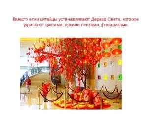 Вместо елки китайцы устанавливают Дерево Света, которое украшают цветами, яр