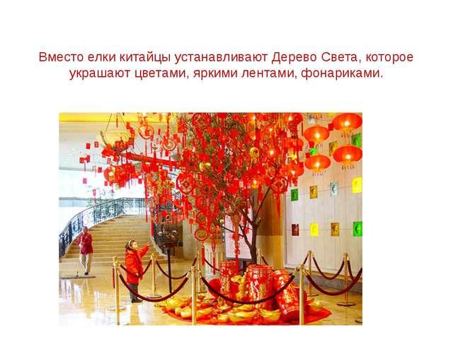 Вместо елки китайцы устанавливают Дерево Света, которое украшают цветами, яр...