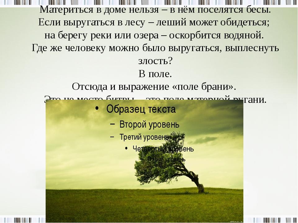 Материться в доме нельзя – в нём поселятся бесы. Если выругаться в лесу – леш...