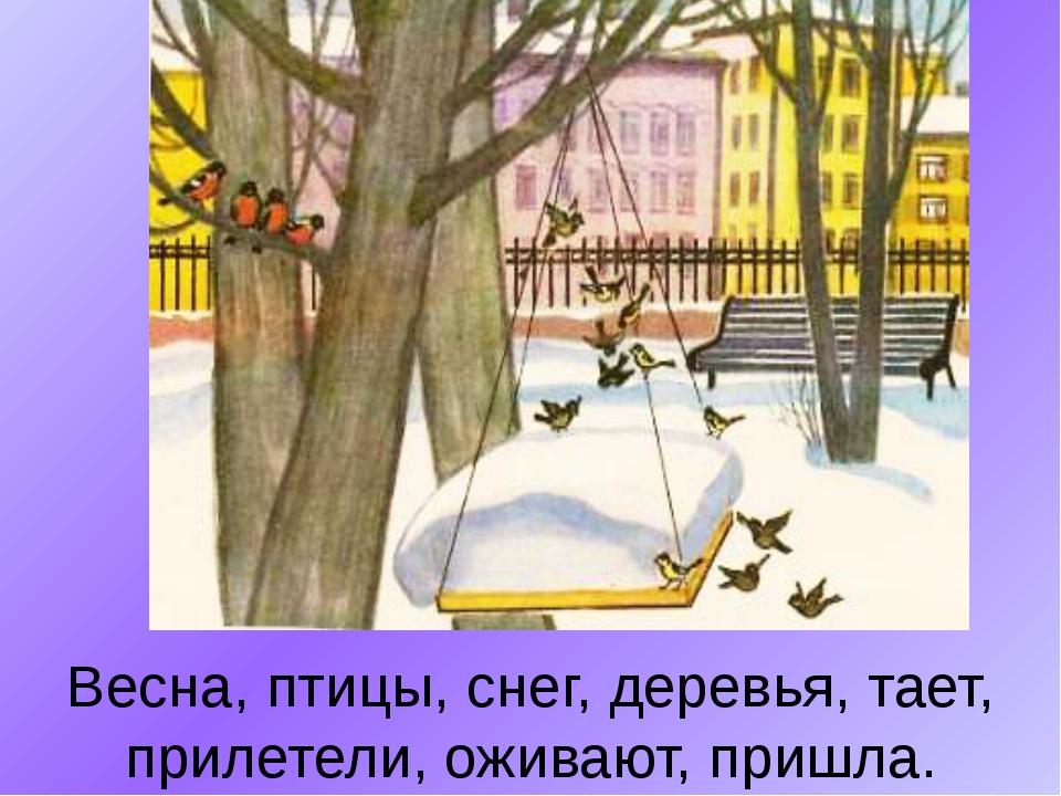 Весна, птицы, снег, деревья, тает, прилетели, оживают, пришла.
