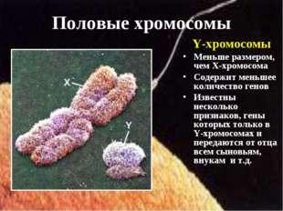 Y-хромосомы Меньше размером, чем Х-хромосома Содержит меньшее количество гено