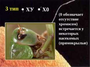 3 тип (0 обозначает отсутствие хромосом) встречается у некоторых насекомых (п