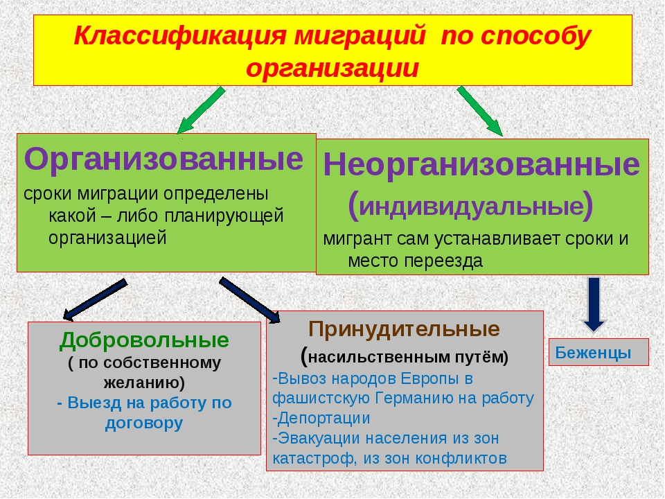 Классификация миграций по способу организации Организованные сроки миграции о...