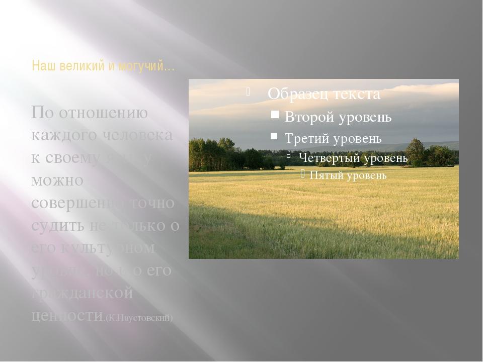 Наш великий и могучий… По отношению каждого человека к своему языку можно сов...
