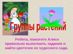 Ребята, помогите Алисе правильно выполнить задания и найти цветочек из чудес