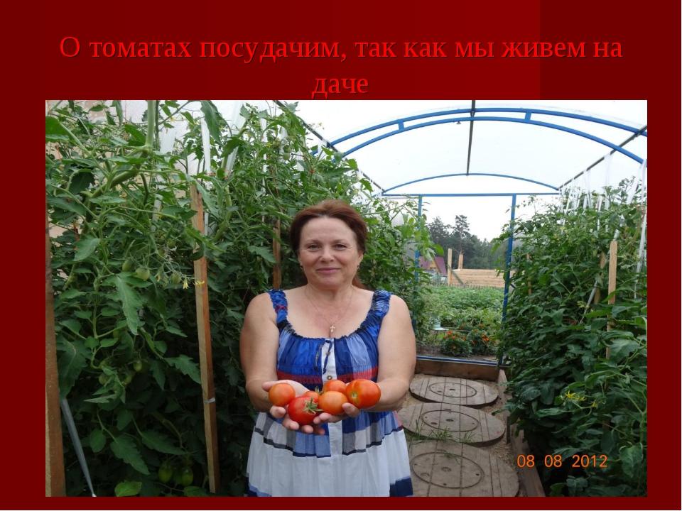 О томатах посудачим, так как мы живем на даче