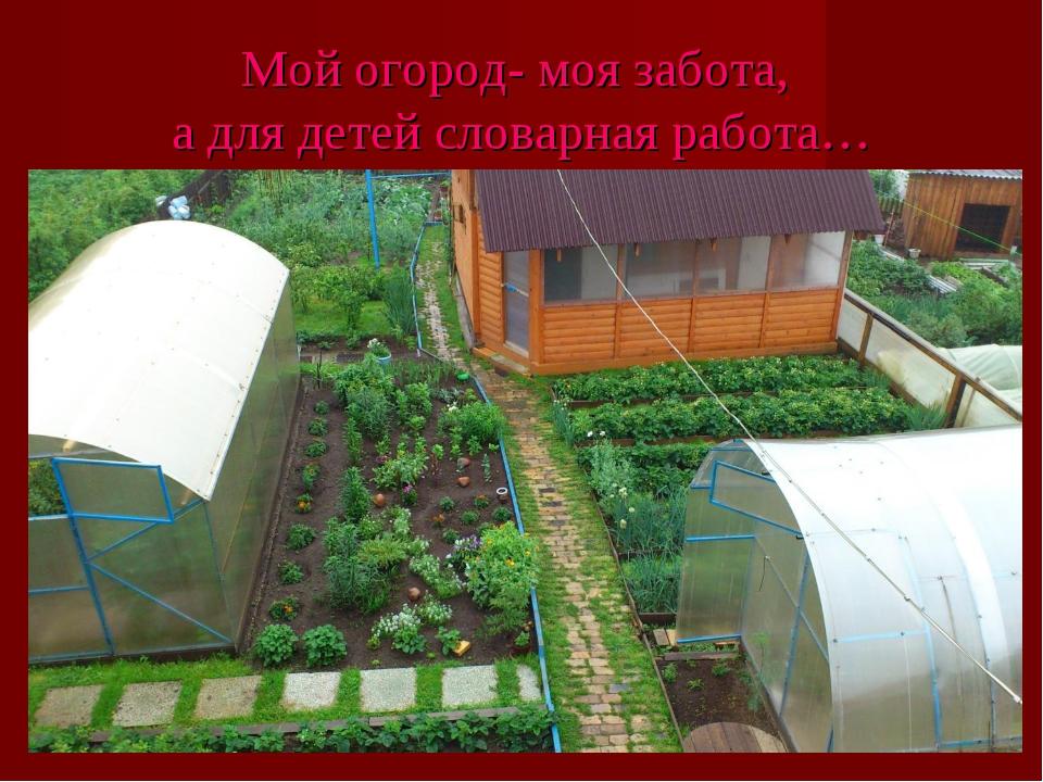 Мой огород- моя забота, а для детей словарная работа…