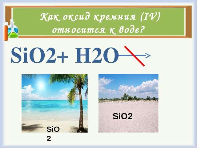 Как оксид кремния (IV) относится к воде? SiO2+ H2O SiO2 SiO2