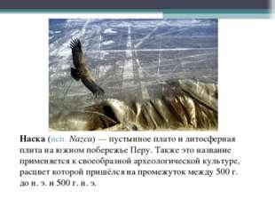 Наска (исп.Nazca)— пустынное плато и литосферная плита на южном побережье П