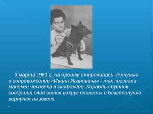 9 марта 1961 г. на орбиту отправилась Чернушка в сопровождении «Ивана Иванов
