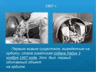 Первым живым существом, выведенным на орбиту, стала советская собака Лайка 3
