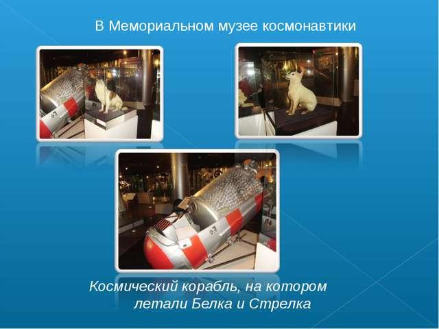 В Мемориальном музее космонавтики Космический корабль, на котором летали Белк...