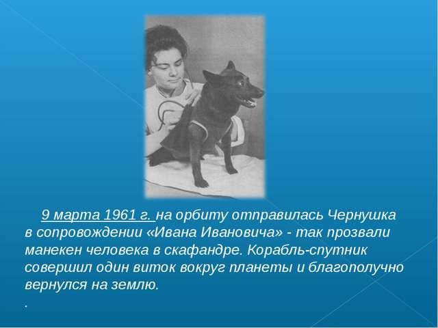 9 марта 1961 г. на орбиту отправилась Чернушка в сопровождении «Ивана Иванов...