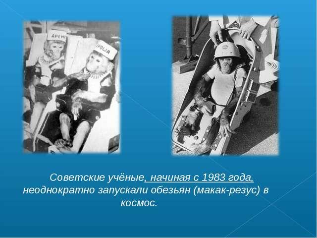 Советские учёные, начиная с 1983 года, неоднократно запускали обезьян (макак...