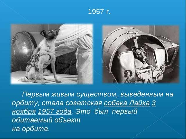Первым живым существом, выведенным на орбиту, стала советская собака Лайка 3...