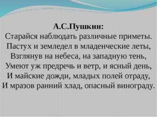 А.С.Пушкин: Старайся наблюдать различные приметы. Пастух и земледел в младенч