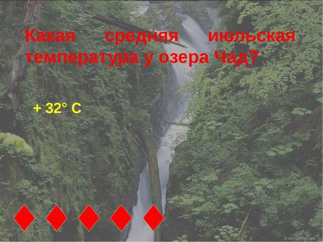 Какая средняя июльская температура у озера Чад? + 32° С