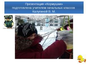 Презентация «Кормушки» подготовлена учителем начальных классов Калугиной В. М.