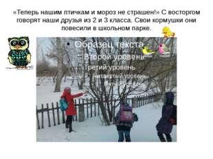 «Теперь нашим птичкам и мороз не страшен!» С восторгом говорят наши друзья из