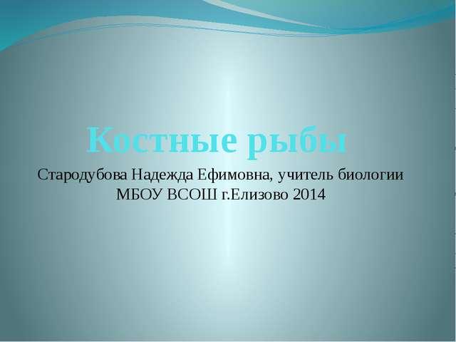 Костные рыбы Стародубова Надежда Ефимовна, учитель биологии МБОУ ВСОШ г.Елизо...