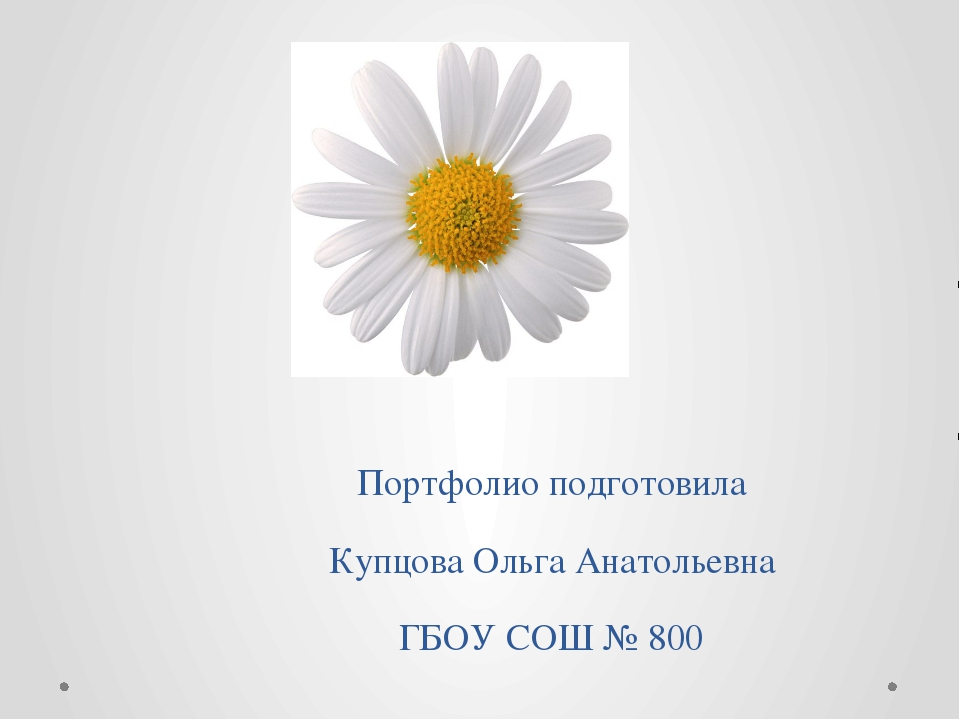 Портфолио подготовила Купцова Ольга Анатольевна ГБОУ СОШ № 800