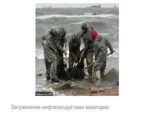 Загрязнение нефтепродуктами акватории
