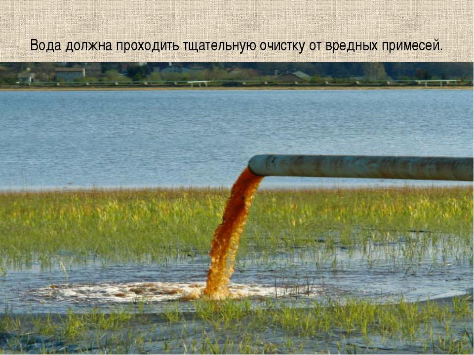 Вода должна проходить тщательную очистку от вредных примесей.