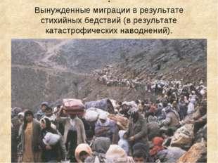 . Вынужденные миграции в результате стихийных бедствий (в результате катастро