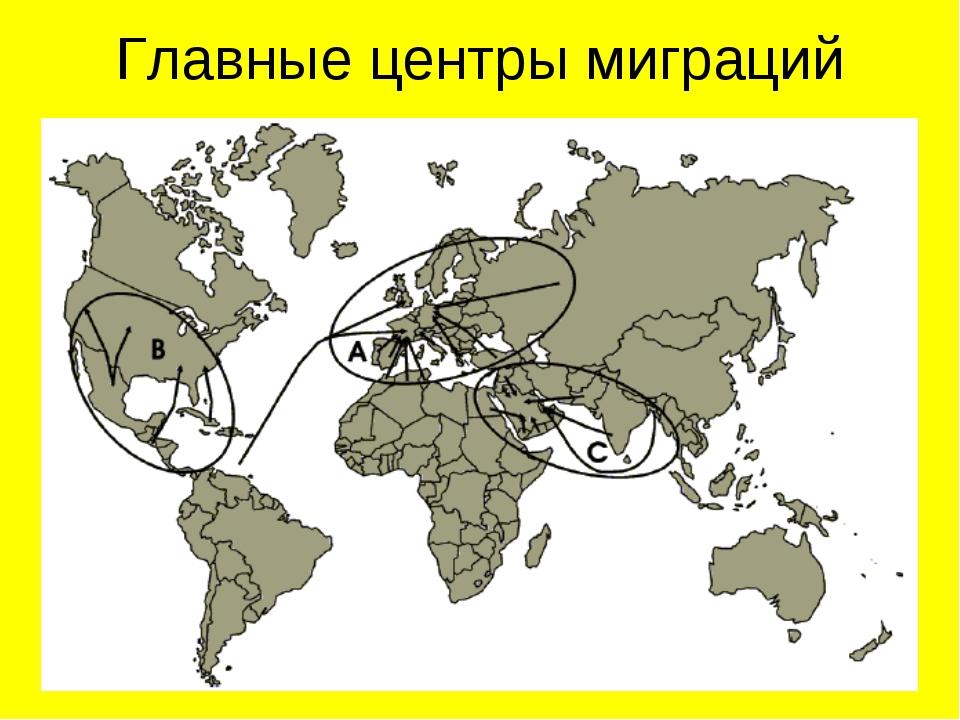 Главные центры миграций