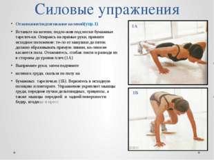 Силовые упражнения Отжимание/подтягивание коленей(упр.1) Встаньте на колени,