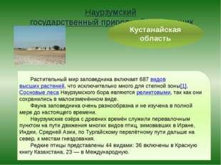 Наурзумский государственный природный заповедник Кустанайская область Растите