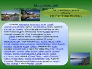 Маркакольский государственный природный заповедник Восточно-Казахстанская об