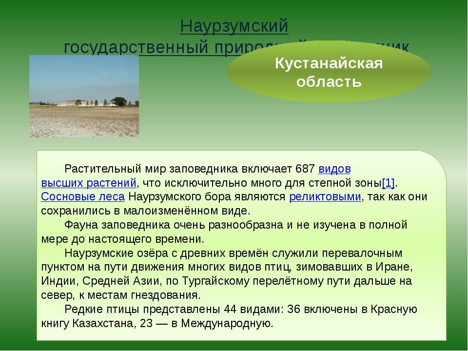 Наурзумский государственный природный заповедник Кустанайская область Растите...