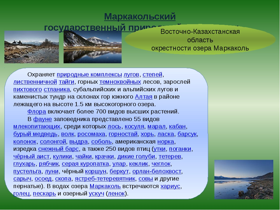 Маркакольский государственный природный заповедник Восточно-Казахстанская об...