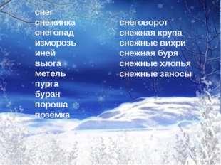 снег снежинка снегопад изморозь иней вьюга метель пурга буран пороша позёмка
