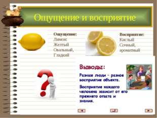 Ощущение: Лимон: Желтый Овальный, Гладкий Восприятие: Кислый Сочный, ароматны