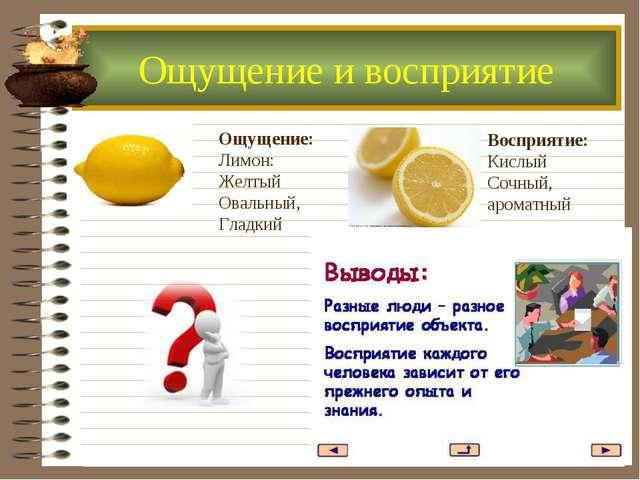 Ощущение: Лимон: Желтый Овальный, Гладкий Восприятие: Кислый Сочный, ароматны...