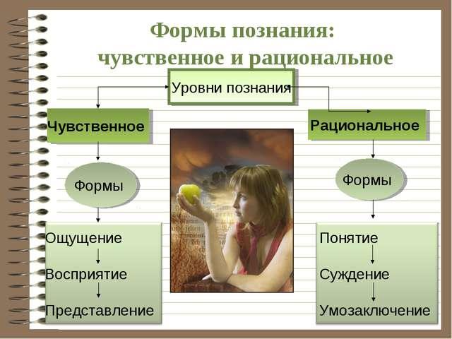 Формы познания: чувственное и рациональное Уровни познания Чувственное Рацион...