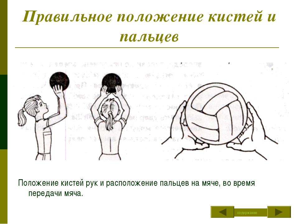 Правильное положение кистей и пальцев Положение кистей рук и расположение пал...