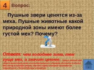 Вопрос: 5 Ответ: Уссурийская тайга, Приморский край «Здесь все не так у нас.